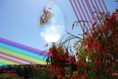 Pink Black Tree Rainbow Art
