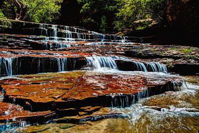 Zion National Park Photographs