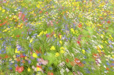 Impressionism Photographs