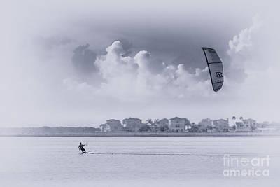 Mississippi Kite Photographs