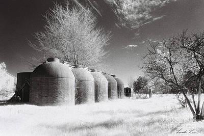 Infrared Film Photographs