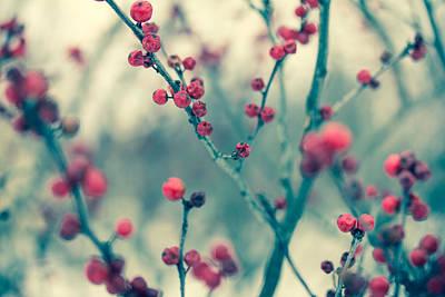 Designs Similar to Winter Berries