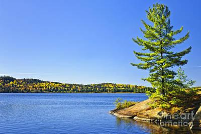 Designs Similar to Pine Tree At Lake Shore