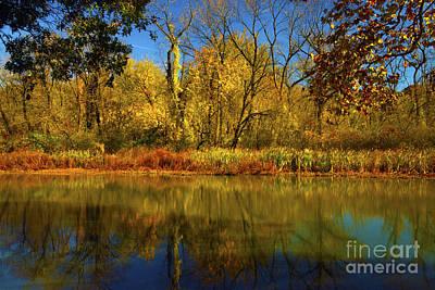 Designs Similar to Autumn Lakeside Colors