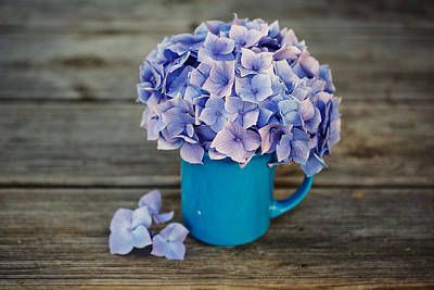 Designs Similar to Hortensia Flowers
