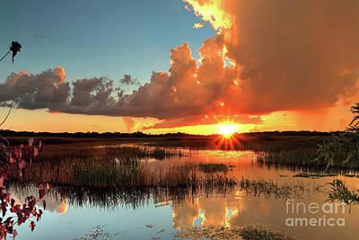 Designs Similar to Marsh Sunset by Rick Mann