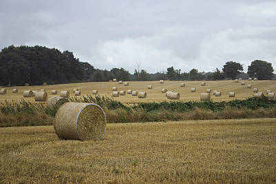 Designs Similar to Hay Bales by Martin Newman