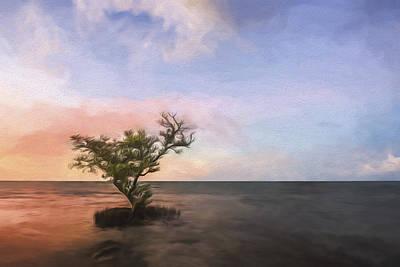 Cypress Digital Art Prints