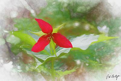 Wake Digital Art Original Artwork