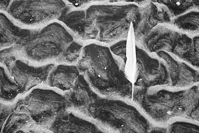 Sand Patterns Original Artwork