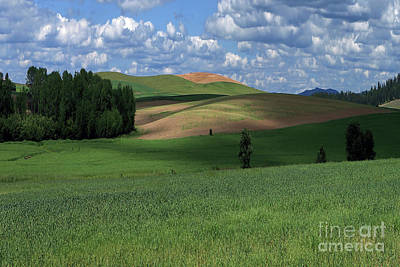 Designs Similar to Idaho Fields by Rick Mann