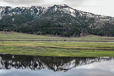 Designs Similar to Lamar Valley Reflections