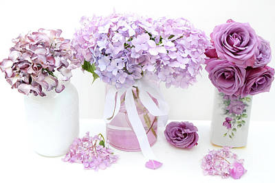 Purple Hydrangeas Photographs