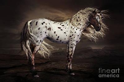 Appaloosa Horse Art