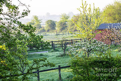 Designs Similar to Morning Mist In Malmesbury