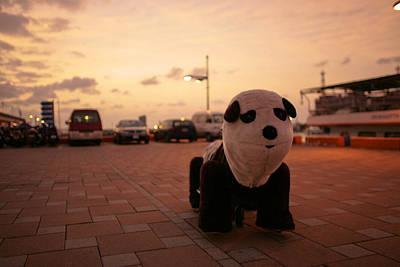 Travelling Panda Prints