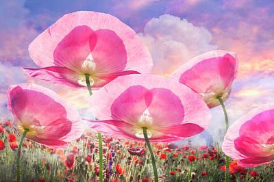 Pretty Pink Poppy Macro Art Prints
