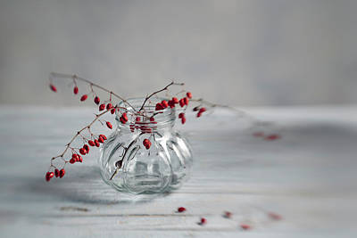 Designs Similar to Still Life With Red Berries