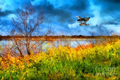Ducks In Flight Digital Art
