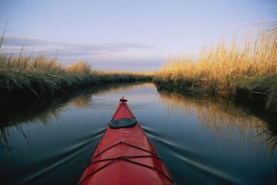 And Wetlands Prints