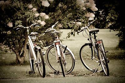 Designs Similar to Three Bicycles