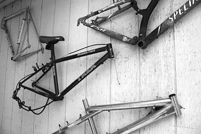 Specialized Mountain Bike Prints