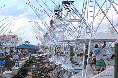 Blue Marlin Photographs