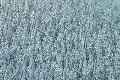 Designs Similar to Winter Pattern by Ryan McGinnis
