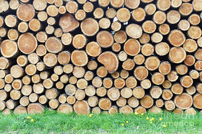 Designs Similar to Woodpile On Grass