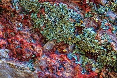 Designs Similar to Large, Naturally Polished Rock