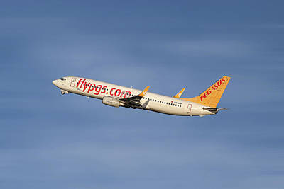 Designs Similar to Pegasus Airlines Boeing 737-82r