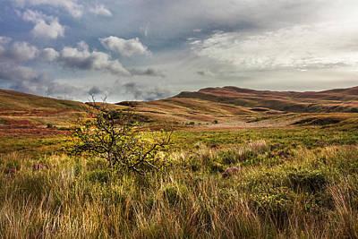 Designs Similar to Along The Scottish Highlands
