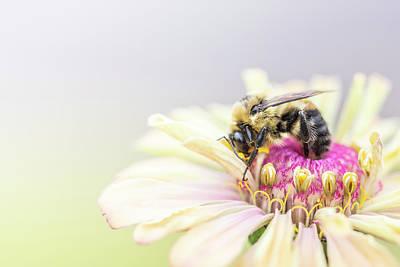 Designs Similar to Bee The Change by Matthew Blum