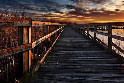 Designs Similar to Boardwalk by Doug Roane