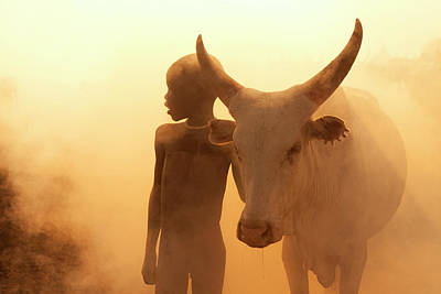 Designs Similar to Boy Of Cattle