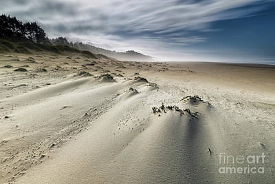 Driftwood Beach Fog Art Prints