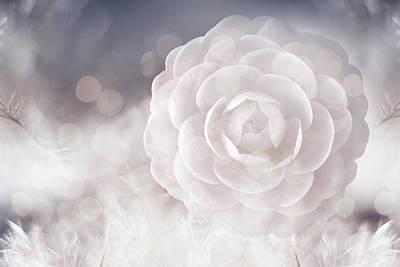Designs Similar to Camellia by Jacky Gerritsen