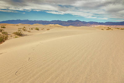 Designs Similar to Death Valley National Park X