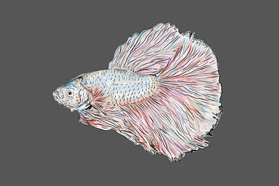 Designs Similar to Fish Painting by Marshal James