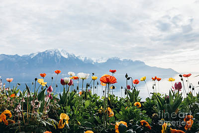 Designs Similar to Flowers By The Lake In Montreux