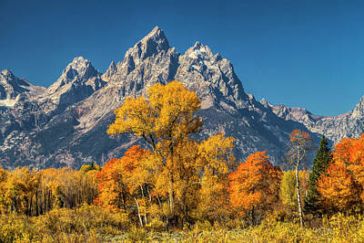 Designs Similar to Grand Teton Autumn