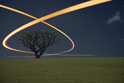 Designs Similar to Light Trails Around Tree