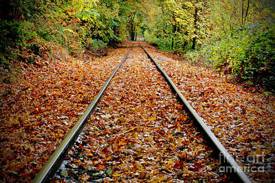 Designs Similar to Looking Down The Tracks,