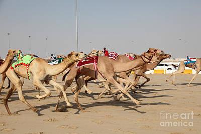 Jockeys Photographs