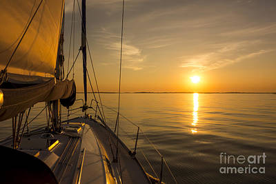 Designs Similar to Sailing Into The Sunset