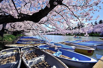 Designs Similar to Sakura Boats Hirosaki Japan