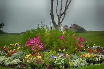 Designs Similar to Seacoast Flowers