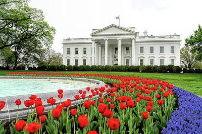 Designs Similar to White House In Spring