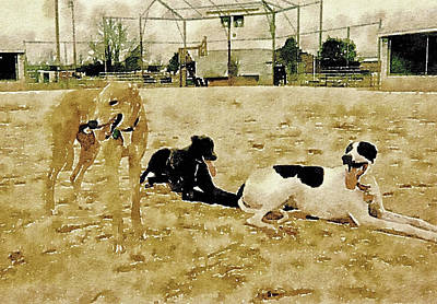 Rescued Greyhound Digital Art Prints