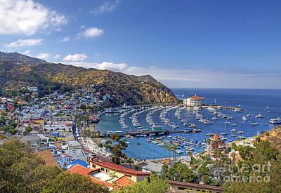 Catalina Island Art